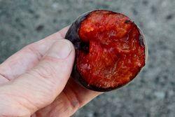 %22Black apricot%22 (biteaway view), Eco Gourmet Market, Midwood, Brooklyn