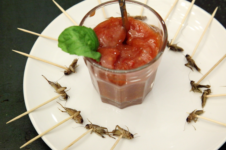 Crickets and guava sauce, Alimentary Initiatives Future Food Salon, West 26th Street, Manhattan