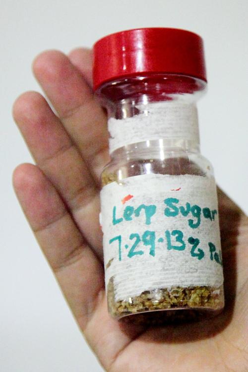 Lerp sugar, Alimentary Initiatives Future Food Salon, West 26th Street, Manhattan