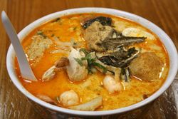 Singapore kari laksa, Taste Good, Elmhurst, Queens