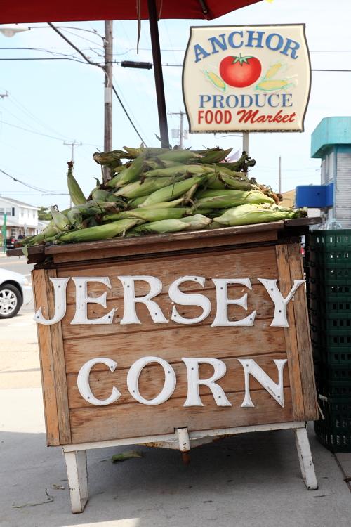 Jersey corn, Anchor Produce, Surf City, New Jersey