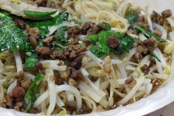 %22Choppy dry noodles%22 from Temple Snacks, Roosevelt Food Court, Flushing, Queens