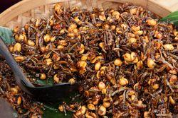 Ikan bilis, Auria's Malaysian Kitchen, Malaysian Winter Market, Bryant Park, Manhattan