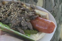 Bulgogi hotdog, New York Hotdog, Flushing Meadows Corona Park, Queens