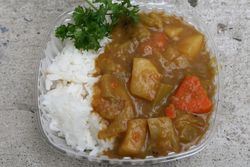 Vegetarian curry rice, New York Buddhist Church Autumn Festival, Riverside Drive, Manhattan