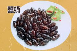 Streetside menu board (detail of silkworm pupae), Flushing, Queens