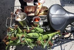 Cycle-mounted elote station, Taco Santo, MasaFest, Rockaway Beach, Queens