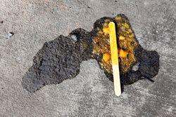 Fallen ice pop, Sunset Park, Brooklyn