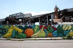 %22Pineapple Mural%22 (detail), Ruth Hofheimer, Gowanus, Brooklyn