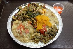 Vegetable sampler, 3 Sisters' & Shanta's Restaurant & Bakery, Richmond Hill, Queens