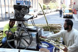 Squeezing juice from sugar-cane stalks, Pakistan Day Festival, Madison Avenue, Manhattan