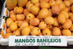 Mangos Banilejos, Corona, Queens