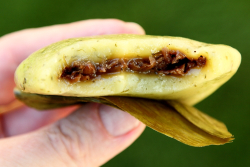 Chao a kueh (biteaway view), Taiwan Hakka Delicacies, Flushing Night Out, Flushing, Queens