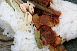 Nasi babat (unwrapped), Aneka Nasi, Bali and Beyond street festival, East 68th St, Manhattan