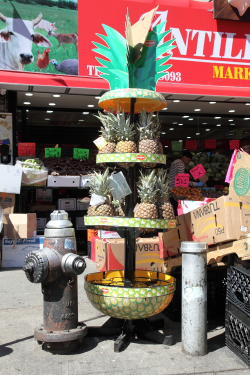 Pineapples within pineapple, St Nicholas Ave, Manhattan