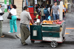 Street cart with roasted plantains and sweet potatoes  Mexico City