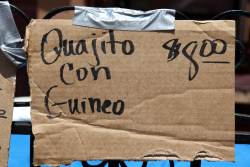 Quajito (cuajito) con guineo)  handwritten sign  116th St Festival  Manhattan