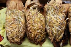 Tamales de charal  Mercado de la Merced  Mexico City