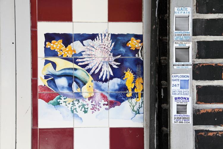 Fish artwork  Devin's Fish & Chips  St Nicholas Ave  Manhattan