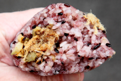 Dry pork purple sticky rice onigiri (fan tuan  or rice roll; biteaway view)  Gu Xiang Cafe  Forsyth St  Manhattan