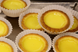 Egg tarts, Golden Steamer, Bensonhurst, Brooklyn