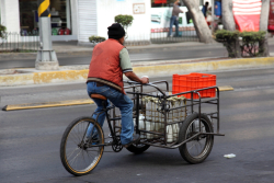 Milk delivery cycle  Mexico City
