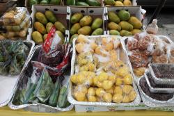 Guyanese street stand  Richmond Hill  Queens