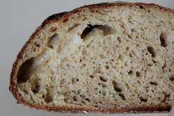 Corn sourdough  Meyers Bageri  Great Northern Food Hall  Grand Central Terminal  Manhattan