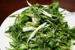 Coriander  green onion  and hot pepper (aka tiger vegetables)  Fu Xiang Ju  Flushing  Queens