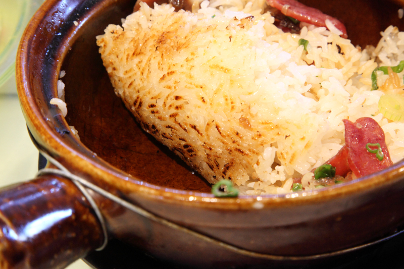 Casserole with Chinese sausage and bacon (bo zai fan; view of crispy rice)  Lai Wang Ka Mei  Flushing  Queens