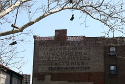 Surviving painted ad for McElraevy (and perhaps another company or two), Williamsburg, Brooklyn