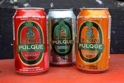 Del Razo brand Pulque, El Popo Mini Market, Jackson Heights, Queens
