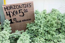 Huauzontle, El Popo Mini Market, Jackson Heights, Queens