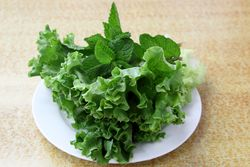 Lettuce and mint leaves, Thanh Da, Sunset Park, Brooklyn