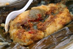 Pork tamale from the Carrello stand, Red Hook ball fields, Brooklyn