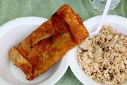 Mughlai paratha and chicken biryani, Royal Bengal Street Fair, Norwood, Bronx