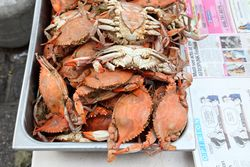 Boiled crabs, Crab Man Mike, East 125th Street, Manhattan