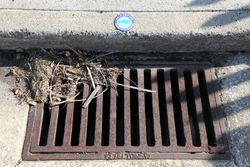No dumping, drains to waterways, Atlantic City, New Jersey