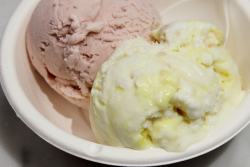 Atlantic beach pie and roasted strawberry buttermilk, Jeni's Splendid Ice Creams, Chicago
