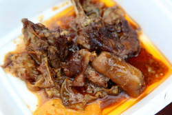 Stewed manicou (opossum), Grenada, Carriacou & Petite Martinique Day, East Flatbush, Brooklyn