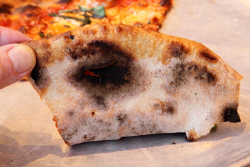 Apizza (underside)  Apizza Regionale  Gotham Market at The Ashland  Fort Greene  Brooklyn
