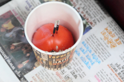 Coffee-cup-and-tomato incense holder  Jackson Heights  Queens