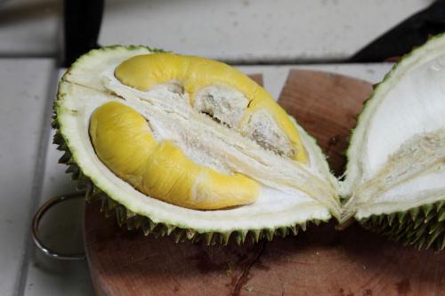Musang king durian  MK Durian Group  Sunset Park  Brooklyn