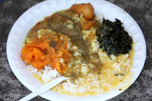 Vegetarian sampler near the route of the Phagwah Parade  South Richmond Hill  Queens