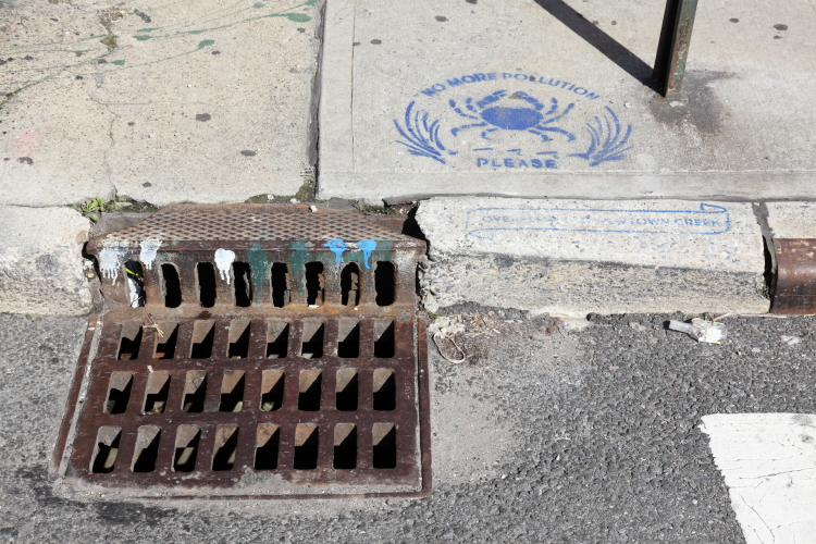 No more pollution please  overflows to Newtown Creek  storm-drain signage with crab  Sunnyside  Queens