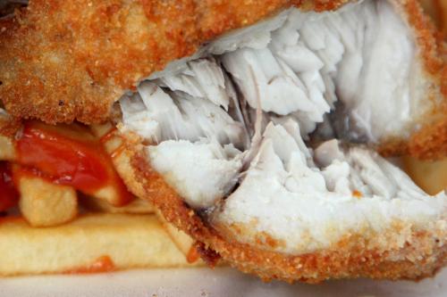 Fried bluefish  Longwood Fish Market  Woodstock  Bronx