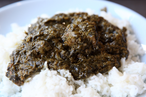 Spinach sauce with beef  Dounet Halal Restaurant  Corona  Queens