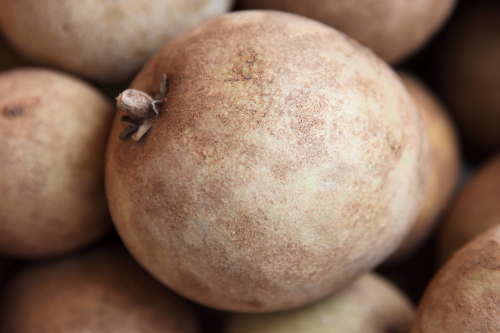 Chikoo (aka sapodilla  labeled Thailan kiwi)  Mulberry St  Manhattan