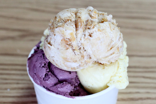 Peanut butter pie  blackberry  and eggnog ice cream  Max and Mina's  Kew Gardens Hills  Queens