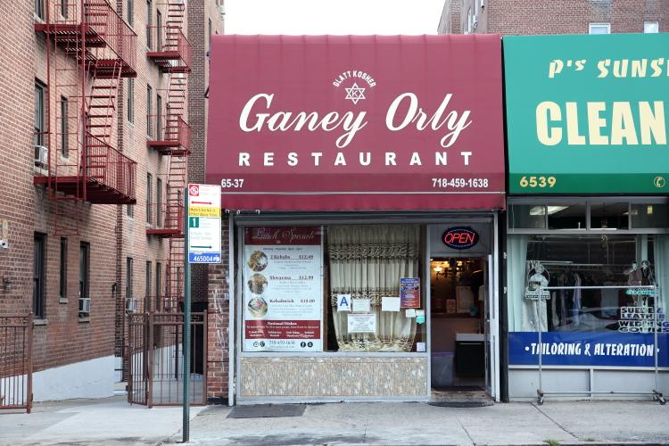 Ganey Orly  Rego Park  Queens